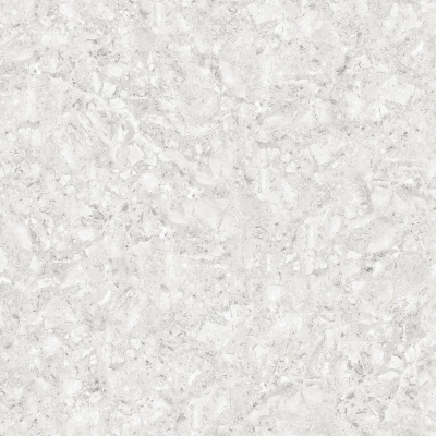 Glossy Digital Vitrified Tiles